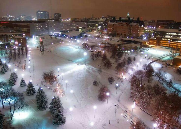 University of Cincinnati ♥