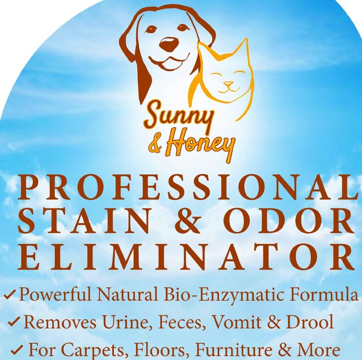 Amazon.com - Enzyme Cleaner, Pet Stain Remover, Odor Eliminator, Best Carpet Stain Remover, Pet Odor Eliminator, Stain Remover, Odor Neutralizer, Cat Urine Smell - Cleaner - Eliminator, Sunny and Honey -