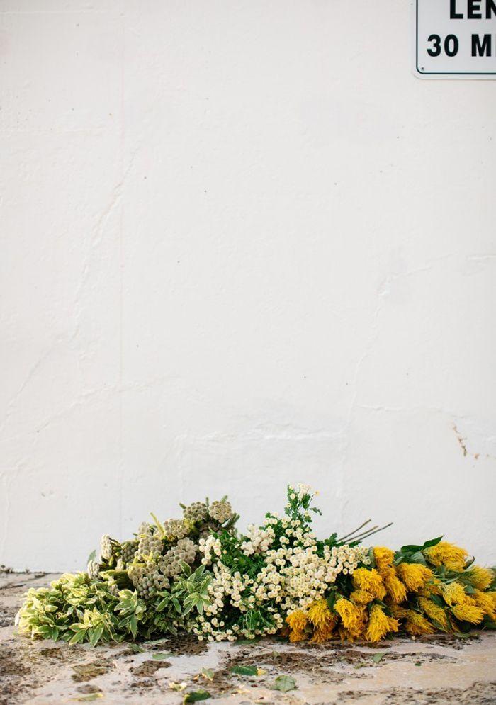 the green gallery | luisa brimble - April and May