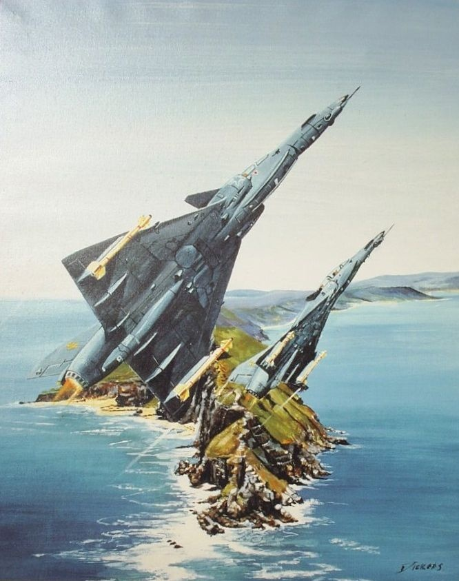 Cheetah's D over Cape Point, by Derrick Dickens, Acrylic on canvass