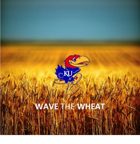 My brother graduated from KU recently and since the day we dropped him of at college I thought that I would also call KU my future home, but I did change my mind my senior year.