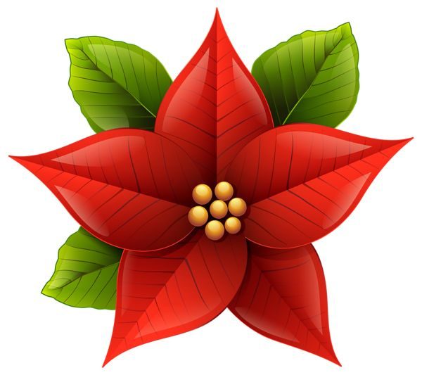 Christmas Poinsettia PNG Clip-Art Image