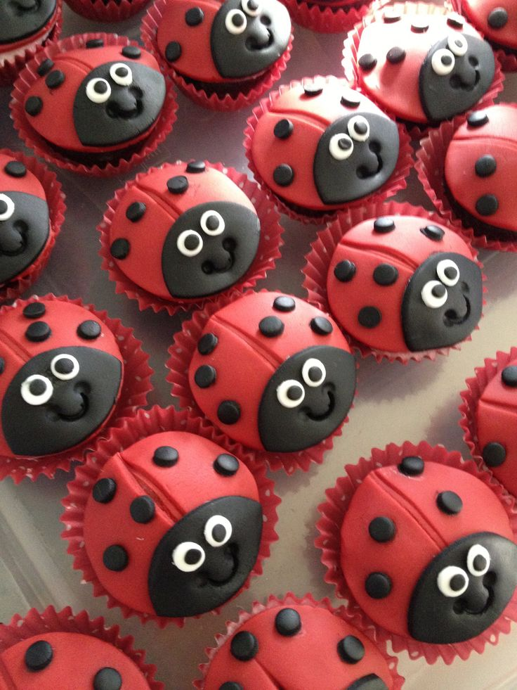Beetroot and chocolate ladybird cakes made by lu.felix@virgin.net .