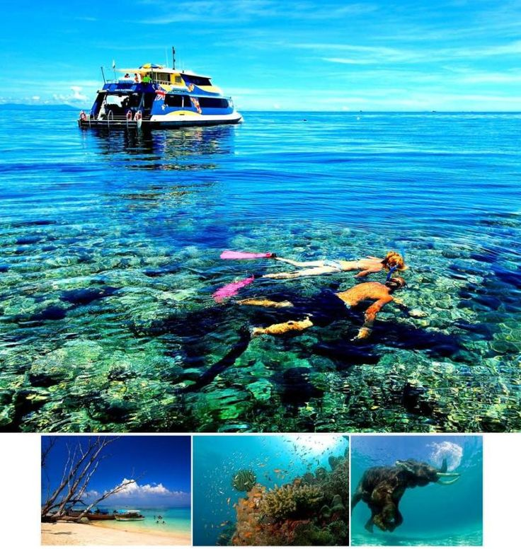 Andaman Islands Tour 5n/6d - Tours From Delhi - Custom made Private Guided Tours in India - http://toursfromdelhi.com/andaman-tour-package-5n6d/