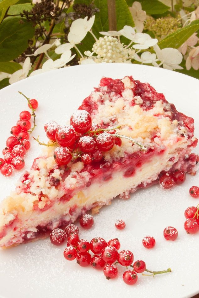 Delicious Streusel Cheese Red Currant Cake