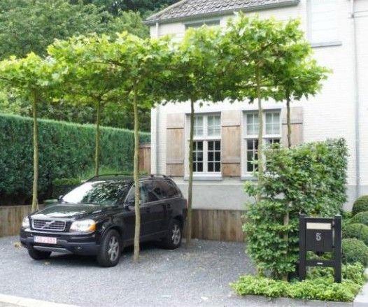 180 best Front Gardens Entrances Driveways images on Pinterest