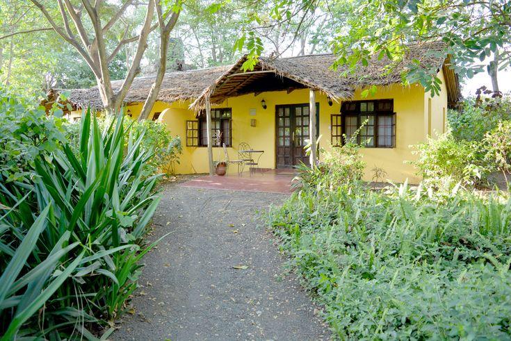 Arusha River Tree Hotel - Tanzania