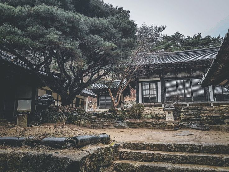 What I love about Korea is the beautiful temples and Hanok houses. This particular one is located in the outskirts of Andong. The capital of the mask dance festival!