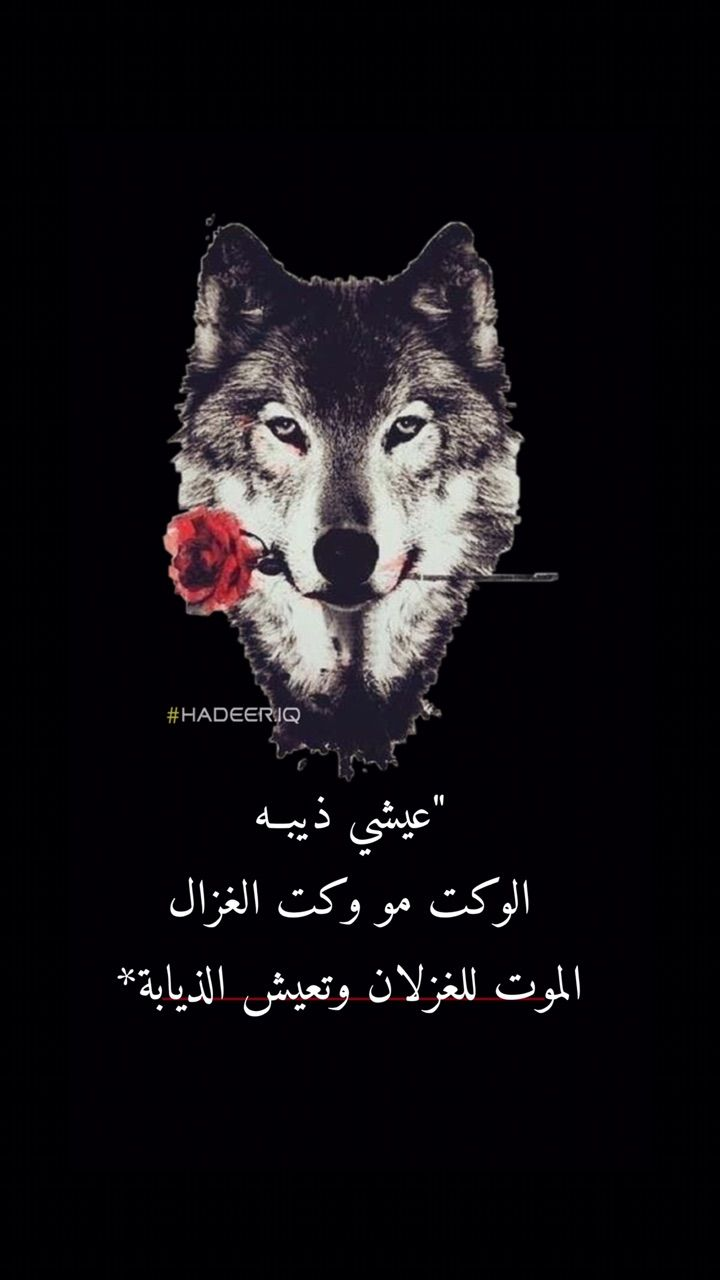 ذيبه اسد لبوه قويه Arabic Tattoo Quotes Book Cover Art Cute Poses For Pictures