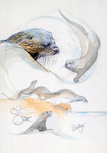 Otter by Walty Dudok van Heel