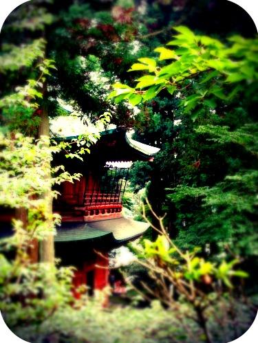 Enryakuji temple, Mount hiei    #hiei #buddhism #red #mountain #trees #temple #summer #enryakuji #kyoto #pagoda #japan