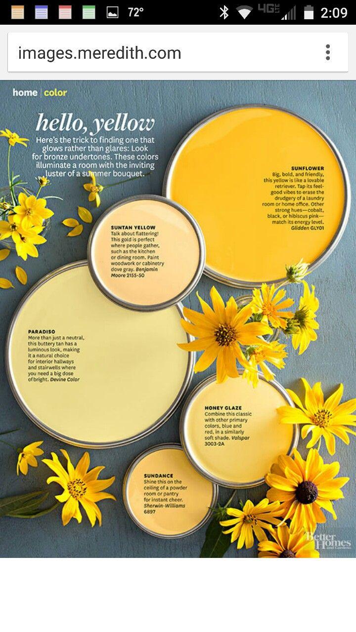best room idea images on pinterest color palettes paint colors