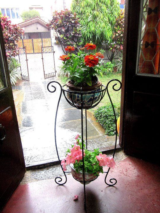 Love the old-English style wrought iron plant holders