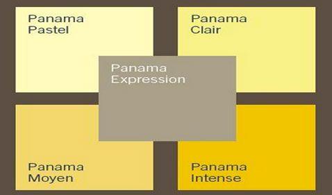 nuancier jaune clair et intense plus un taupe de la palette Panama de dulux valentine