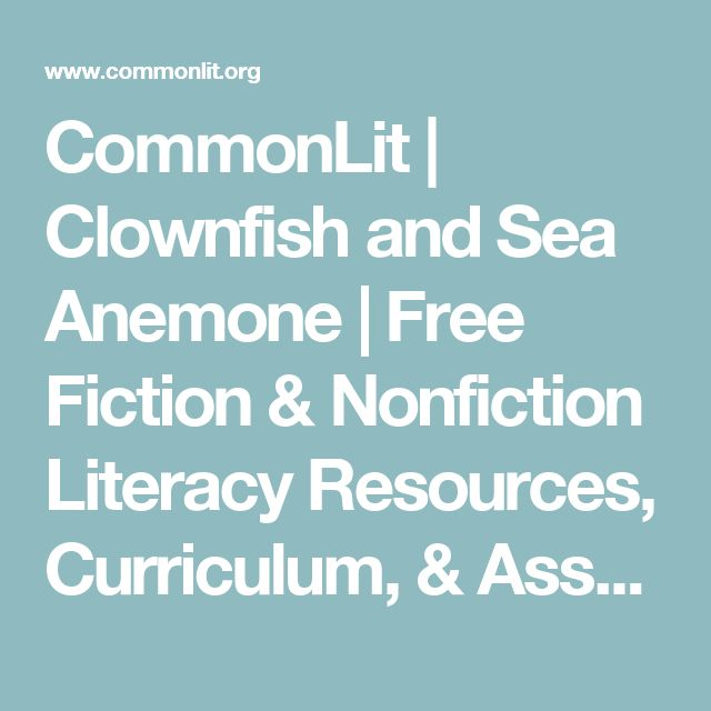 Clownfish and Sea Anemone | Curriculum, High school ...