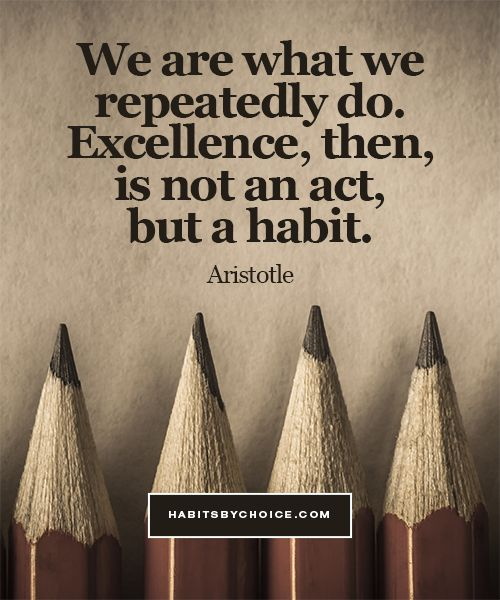 """We are what we repeatedly do. Excellence, then, is not an act but a habit."" In this quote Aristotle deconstructs the aspirational desire for excellence."