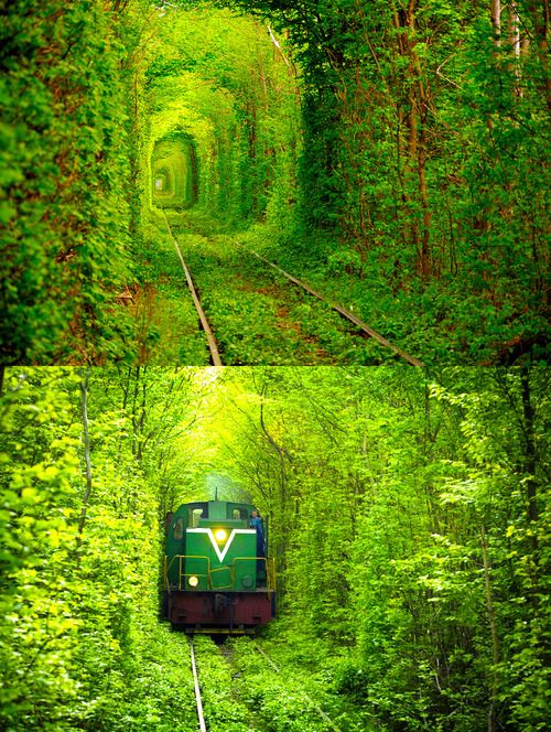 ウクライナに存在する「愛のトンネル」 ロマンチックすぎて生きるのが辛い・・・