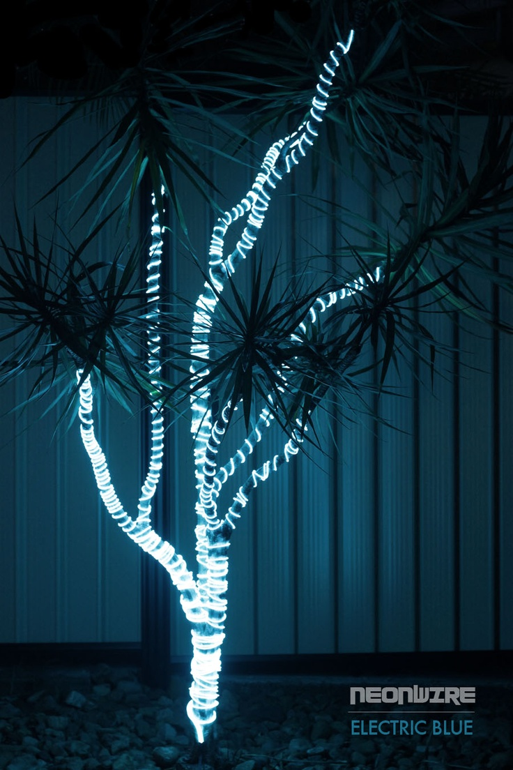 NeonWire can be used for various outdoor garden lighting purposes. We've used Electric Blue NeonWire here to spiral around a Dracena plant.