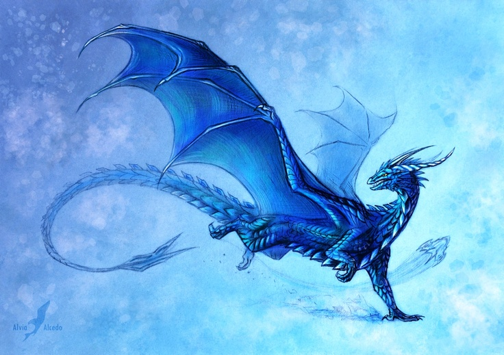 blue dragon                                                                                                                                                      More