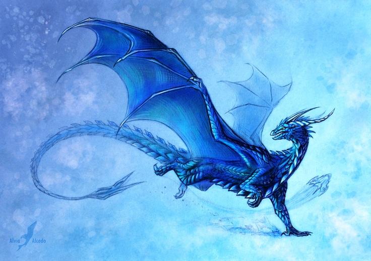 blue dragon                                                                                                                                                      More