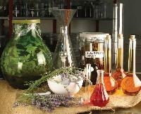 qualiterbe.it  Impresa etica che si occupa della ricerca, produzione, distribuzione e vendita di prodotti fitoterapici e fitocosmetici di altissima qualità.