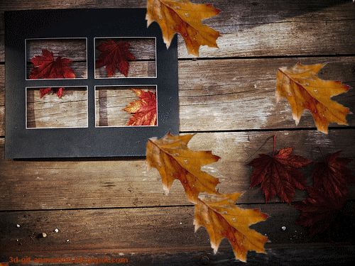 gif-5.blogspot.com: free animated .gif nature pictures 3D HD wallpapers download Autumn tree leaf fall animated gifs ...