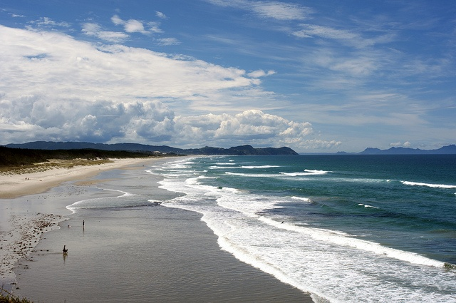Te Arai Beach, Northland, New Zealand