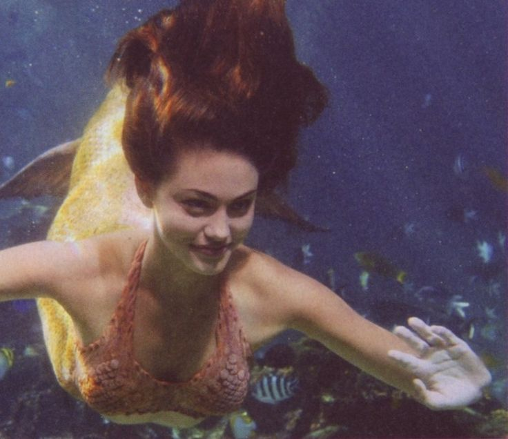 17 best images about h2o just add water on pinterest for Mako mermaids cleo