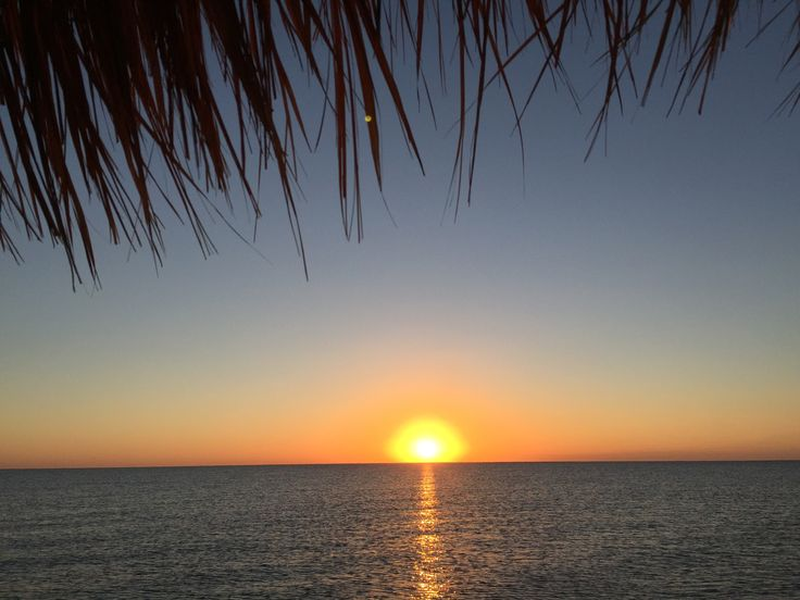 Good morning from Excellence Riviera Cancun, make sure you set an alarm for this glorious sunset from the pier