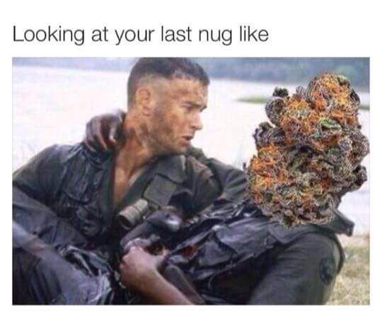 your last nug meme weed funny bud