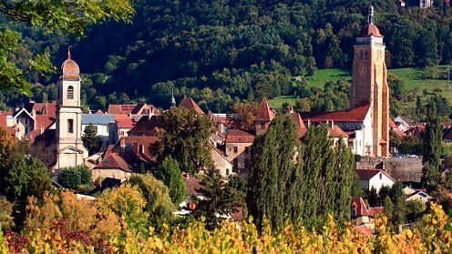 Arbois - Pasteur grew up in Arbois, a small town in eastern France surrounded by farms and vineyards.