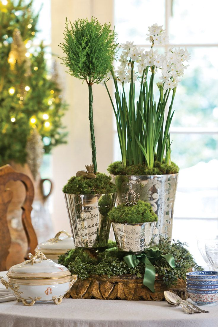 Extend your enjoyment of the holidays by choosing potted blooms over cut stems. Boxwood topiaries—a year-round fixture—take on a festive ambience when slipped into a collection of mercury-glass containers.