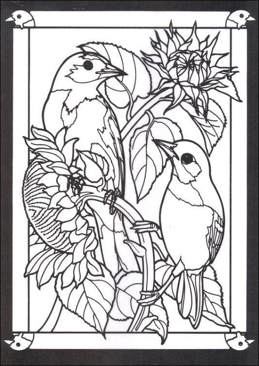 beautiful birds in mated pairs stained glass coloring book ...