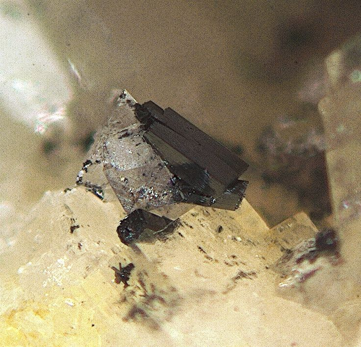 Derbylite, (Fe+++,Fe++,Ti)7Sb+++O13(OH), Buca della Vena Mine, Ponte Stazzemese, Stazzema, Apuan Alps, Lucca Province, Tuscany, Italy. Black derbylite crystals, size up to 1 mm. Copyright: © Flavio G. Taricco