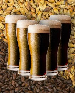 "Myths Surrounding Dark Beer - ""dark is not a flavor"" is what I tell people visiting the brewery. Brown ales and stouts can be some of the smoothest beers for non-beer drinkers looking to try craft beer"