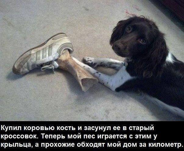 Сергей Chieff