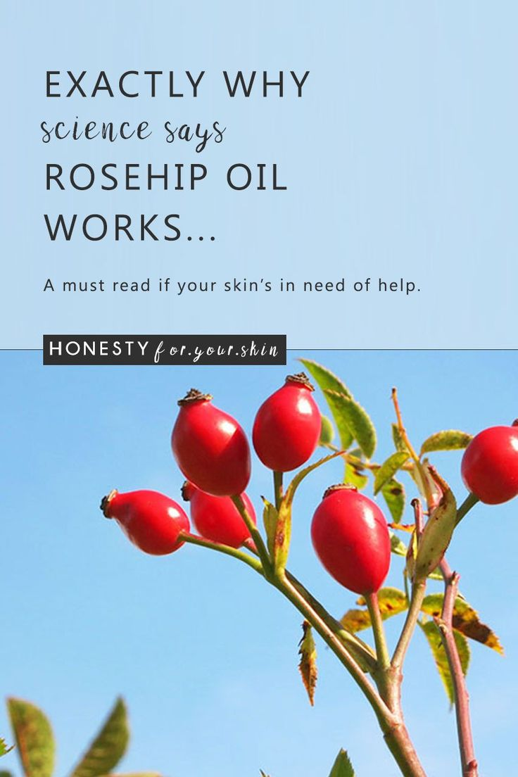 Rosehip oil has recently shot to the halls of skincare fame. Once unknown, rosehip oil really is unique with 2 huge, science backed reasons why this anti-ageing, anti-acne oil works... Oh and if you do use Rosehip oil, make sure to read the last part of this article before you invest!