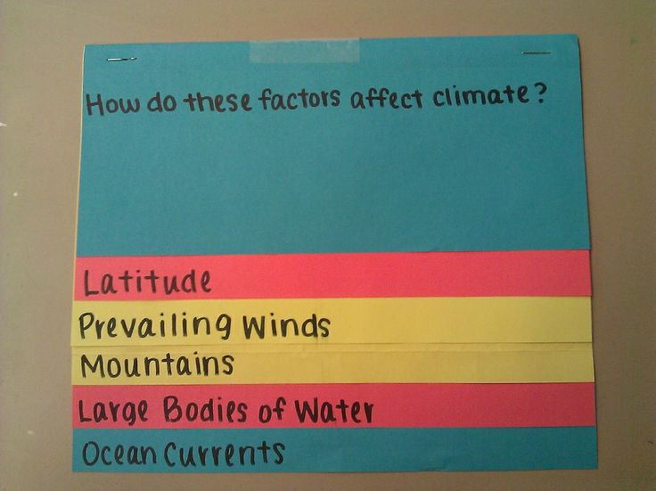 Climate and Biomes Two Day Lesson NGSS* Aligned. Great End to a Weather Unit! $