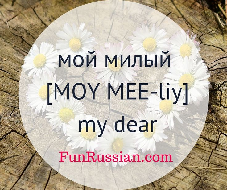 Russian terms of endearment for boyfriend