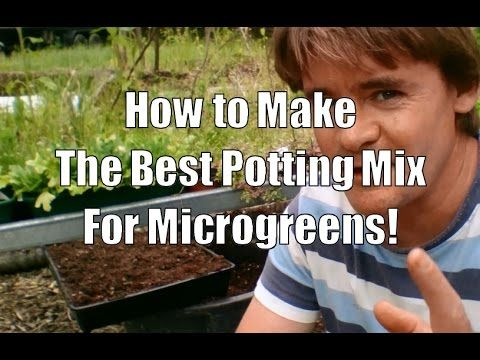 How to Make a Potting Soil Mixture for Microgreens - YouTube