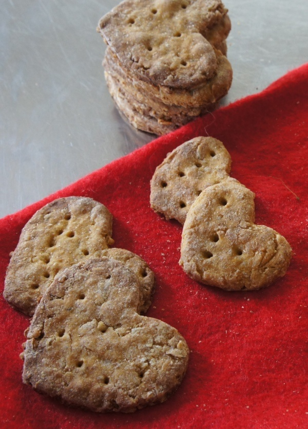 Healthy Doggie Treats (good for digestion and itchy skin) @Joseph Cohen Bone for Harvey