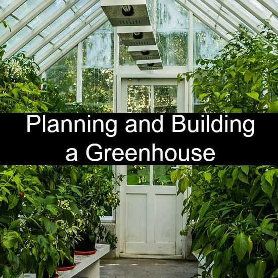 Planning and Building a Greenhouse