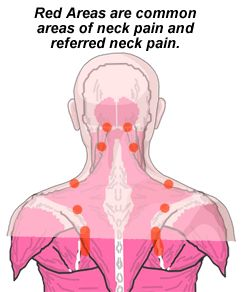 24 best images about physical therapy exercises for back