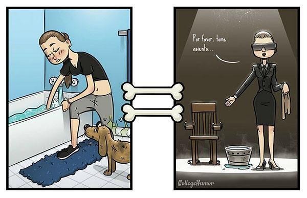 Cómo ven el mundo los perros | Cuidar de tu perro es facilisimo.com