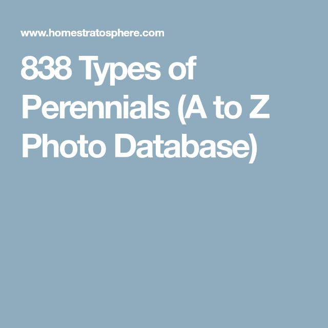 838 Types of Perennials (A to Z Photo Database)