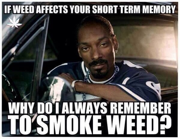 If weed effects your short term memory...
