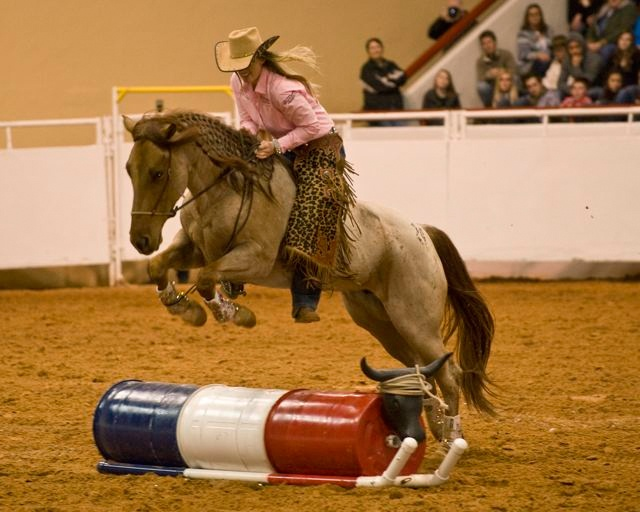 Professional's Choice endorser Wylene Wilson demonstrates some impressive training at the Mustang Makeover competition.