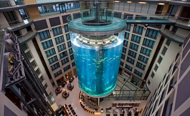 The elevator at the AquaDom in Berlin travels up the middle of an 82-foot tall aquarium.