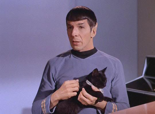 "Kirk watches Spock as he strokes the cat in the meeting room. ""What do you think of the cat, Spock?"" he asks. ""It is a very lovely animal, Captain,"" Spock replies. ""I feel a strange attraction to it."" From Assignment: Earth (Star Trek)"