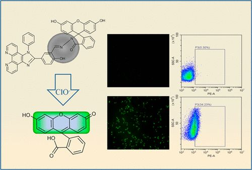 Turn-on Fluorescent Probe for Exogenous and Endogenous Imaging of Hypochlorous Acid in Living Cells and Quantitative Application in Flow Cytometry